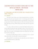 GIẢI PHÁP NÂNG CAO CHẤT LƯỢNG CHO VAY TIÊU DÙNG TẠI VPBANK
