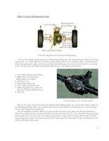 Cấu tạo, bảo dưỡng và sửa chữa ô tô P2