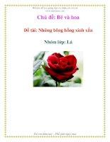 Chủ đề: Bé và hoa - Đề tài: Những bông hồng xinh xắn - Nhóm Lớp: Lá