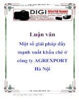 Luận văn: Một số giải pháp đẩy mạnh xuất khẩu chè ở công ty AGREXPORT Hà Nội