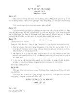 bộ đề thi HSG + đáp án lý 9