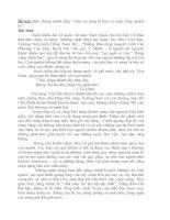 Bảo vệ rừng - bài văn hay lớp 7