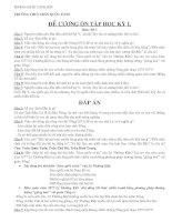 DE CUONG + DAP AN SU 7 -HKI-10-11