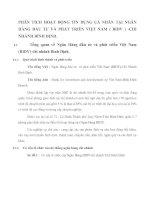 PHÂN TÍCH HOẠT ĐỘNG TÍN DỤNG CÁ NHÂN TẠI NGÂN HÀNG ĐẦU TƯ VÀ PHÁT TRIỂN VIỆT NAM
