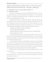 ĐÁNH GIÁ HIỆU QUẢ PHÁT TRIỂN SẢN XUẤT VÀ TIÊU THỤ CAO SU TRÊN ĐỊA BÀN HUYỆN HƯƠNG TRÀ