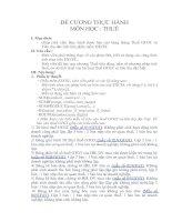 Đề cương thực hành môn học: Thuế