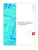ADC KRONE - Guide Book - FTTP - The Efficient Service Delivery Architecture for OSP network