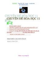 TONG HOP CHUYEN DE HH 11 DAY DU.doc