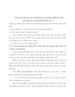 MÔ HÌNH PHÁP LUẬT VỀ KINH DOANH BẢO HIỂM Ở VIỆT NAM TRONG GIAI ĐOẠN HIỆN NAY