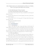 THỰC TRẠNG NẶNG LỰC CẠNH TRANH CỦA CÔNG TY  CỔ PHẦN ĐẦU TƯ XÂY DỰNG BẤT ĐỘNG SẢN LANMAK