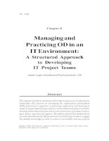 Managing and Practicing OD in an IT Environment - A Structured Approach to Developing IT Project Teams
