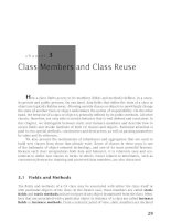Class Members and Class Reuse