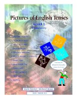 Sách ngữ pháp Tiếng Anh -Pictures of English Tenses grammar