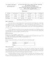 Đề thi HSG tin Vĩnh Phúc 2010 (dành cho trường chuyên)