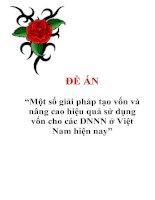 """Đề án """"Một số giải pháp tạo vốn và nâng cao hiệu quả sử dụng vốn cho các DNNN ở Việt Nam hiện nay"""""""