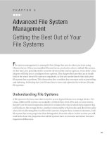 Advanced File System Management
