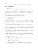 CƠ SỞ LÝ LUẬN VỀ TẠO ĐỘNG LỰC LÀM VIỆC CHO NGƯỜI LAO ĐỘNG