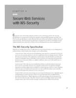 Secure Web Services with WS-Security