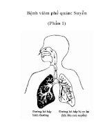Bệnh viêm phế quản: Suyễn (Phần 1)
