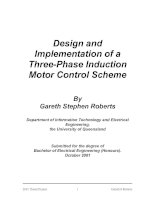 Design and Implementation of a Three-Phase Induction Motor Control Scheme