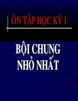 On tap hoc ky I Boi chung nho nhat