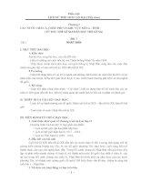 Giáo án Lịch sử 11 (cơ bản)