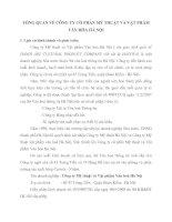 TỔNG QUAN VỀ CÔNG TY CỔ PHẦN MỸ THUẬT VÀ VẬT PHẨM VĂN HÓA HÀ NỘI