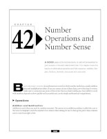 Number Operations and Number Sense