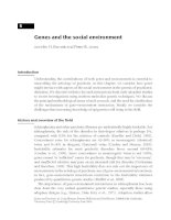 Genes and the social environment