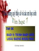 TRINH BAY DU LIEU BANG BIEU DO