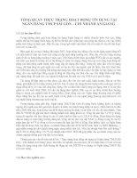 TỔNG QUAN THỰC TRẠNG HOẠT ĐỘNG TÍN DỤNG TẠI NGÂN HÀNG TMCP SÀI GÒN – CHI NHÁNH AN GIANG
