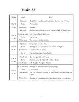 Bài giảng Giao an lop 5 tuan 32