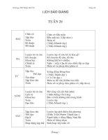 Bài giảng GIAO AN TUAN 20 - LOP 4 CKTKN+KNS