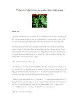 Phòng trị bệnh cho cây mướp đắng (khổ qua)