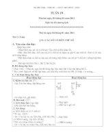 Bài soạn giáo án lớp 3- tuần 19+20-CKTKN+BVMT