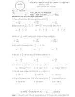 Bài soạn Đề kiểm tra và hướng dẫn chấm điểm giữa kỳ môn toán lớp 5