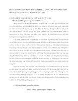 PHÂN TÍCH TÌNH HÌNH TÀI CHÍNH TẠI CÔNG TY  CỔ PHẦN CHẾ BIẾN NÔNG SẢN XUẤT KHẨU CẦN THƠ