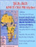 Bài 31- Kinh tế châu Phi (tt)
