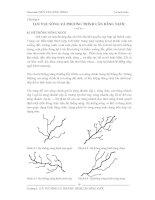 Giáo trình Thủy văn công trình - chương 4