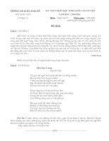 Bài giảng Đề thi HSG Văn 9 Vòng 2
