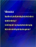 Gián án bai giang sinh hoc 6 tiết 43