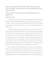 MỘT SỐ GIẢI PHÁP GÓP PHẦN HOÀN THIỆN CÔNG TÁC HẠCH TOÁN VỐN BẰNG TIỀN TẠI CÔNG TY CỔ PHẦN THƯƠNG MẠI