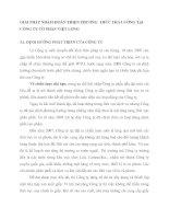 GIẢI PHÁP NHẰM HOÀN THIỆN PHƯƠNG  THỨC TRẢ LƯƠNG TẠI CÔNG TY CỔ PHẦN VIỆT LONG