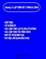 Kiến Trúc Máy Tính Chương 13