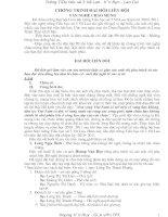 Bài giảng chương trinh đại họi liên đội năm học 2010-2011