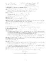 Bài soạn Đề thi thử đại học lần 1 nam 2011 môn Toán khối D - THPT Ninh Giang