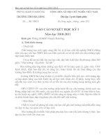 Gián án Báo cáo sơ kết học kỳ I