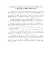 PHÂN TÍCH HOẠT ĐỘNG SẢN XUẤT KINH DOANH CỦA CÔNG TY TT C Ô NĂM 2003