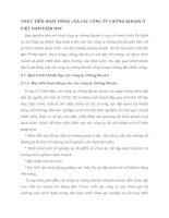 THỰC TIỄN HOẠT ĐỘNG CỦA CÁC CÔNG TY CHỨNG KHOÁN Ở VIỆT NAM HIỆN NAYTHỰC TIỄN HOẠT ĐỘNG CỦA CÁC CÔNG TY CHỨNG KHOÁN Ở VIỆT NAM HIỆN NAY