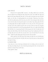 Bài giảng Sang kien kinh nghiem Mot so sai lam thuong gap cua hoc sinh khi tinh tich phan